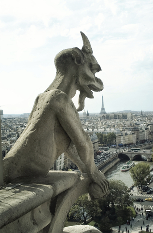 http://www.dreamstime.com/royalty-free-stock-photos-panoramic-paris-gargoyle-image15495558